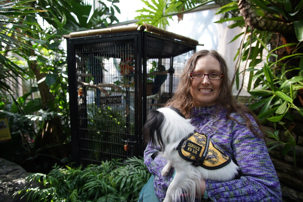"""Veronica with Hestia in front of a big bird cage. The parrots inside were squawking at us, and Hestia didn't want to take her eyes off of them! You can clearly see Hestia's """"Service k9 3/4"""" patch on the side of her vest."""