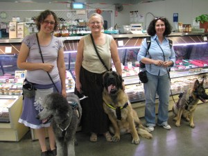 Veronica (wearing purple) with Ollie (Standard Poodle), Jeanne (wearing a beige shirt and dark skirt) with Teagan (English Mastiff), and Linden (wearing a blue shirt and jeans) with Iris (German Shepherd Dog). We are in the grocery store.