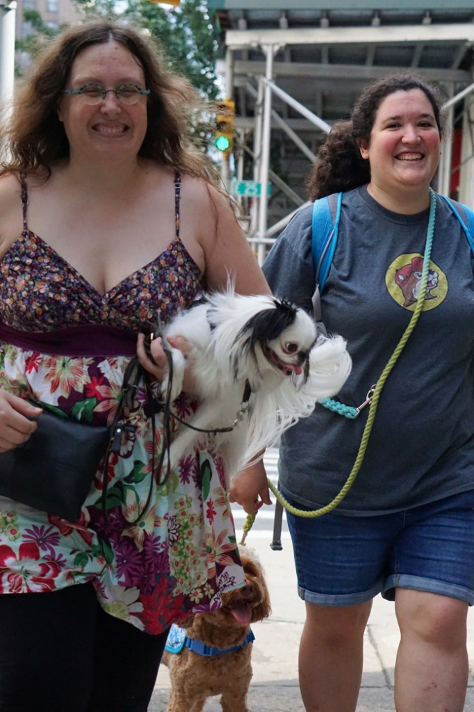 Hannah and Veronica smile at the camera.  Veronica is wearing a multicolored top with black leggings, and Hestia is a Japanese Chin with a red vest on.  Hestia is being carried in one arm and is looking crazed as she tries to hold on to Veronica's arm.  Sasha smiles in the background.