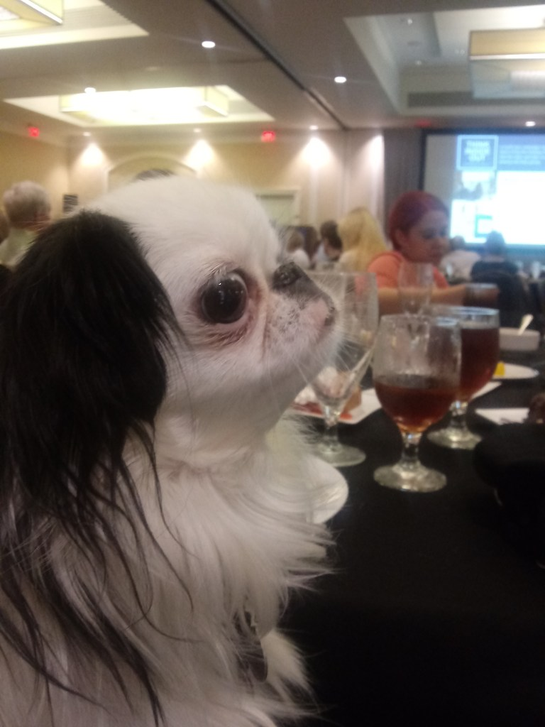 At lunch, a closeup of Hestia's face with our friend Laura in the background at the other end of the table.