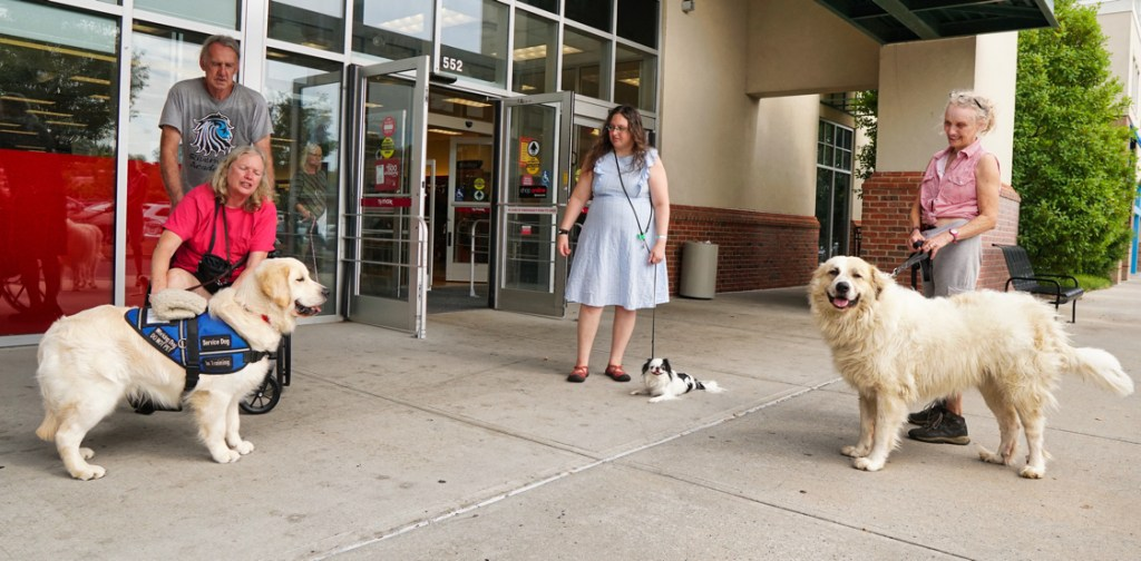 Standing outside of TJ Maxx from left to right are Mick with Barbara with Tripper, Veronica with Hestia, and Phyllis with Avalanche.  Phyllis' hair is up in a bun, and she is wearing a pink checked shirt.  Tripper is looking at Avalanche, while Hestia and Avalanche are looking at the camera.