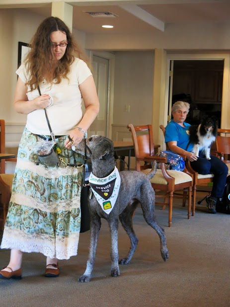 Me walking with Ollie during a PSDP convention.