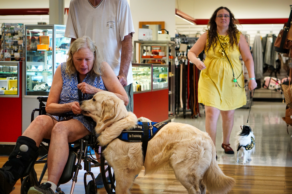 Barbara gives Tripper a treat as Mick pushes them.  I am in the background making a weird face and doing something strange with my arm while Hestia heels next to me and looks up at me.