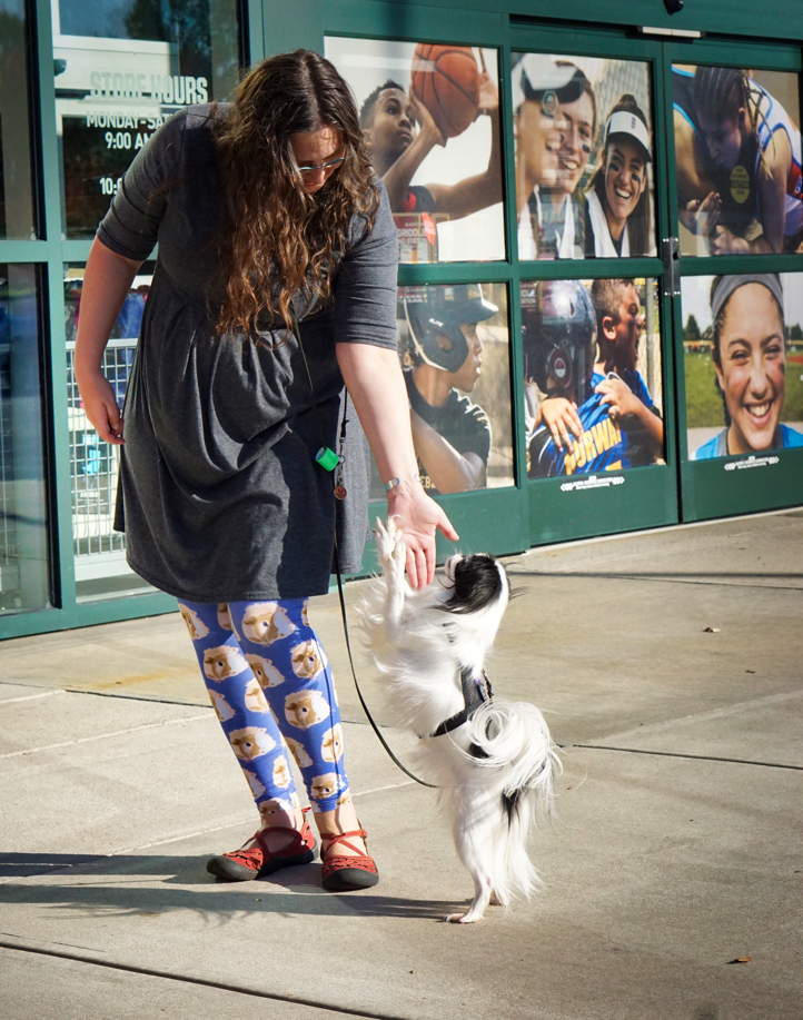 Outside of Dick's, Veronica gives a touch command to Hestia.  Hestia LEAPS into action to touch Veronica's hand.