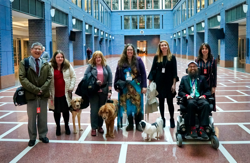 Several of the advocates who were at the DOT meeting.  There are two guide dogs and Hestia in the picture.