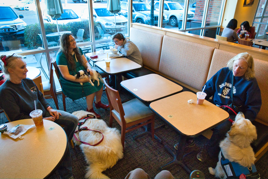 As shot from above, everyone sits and relaxes at Panera.