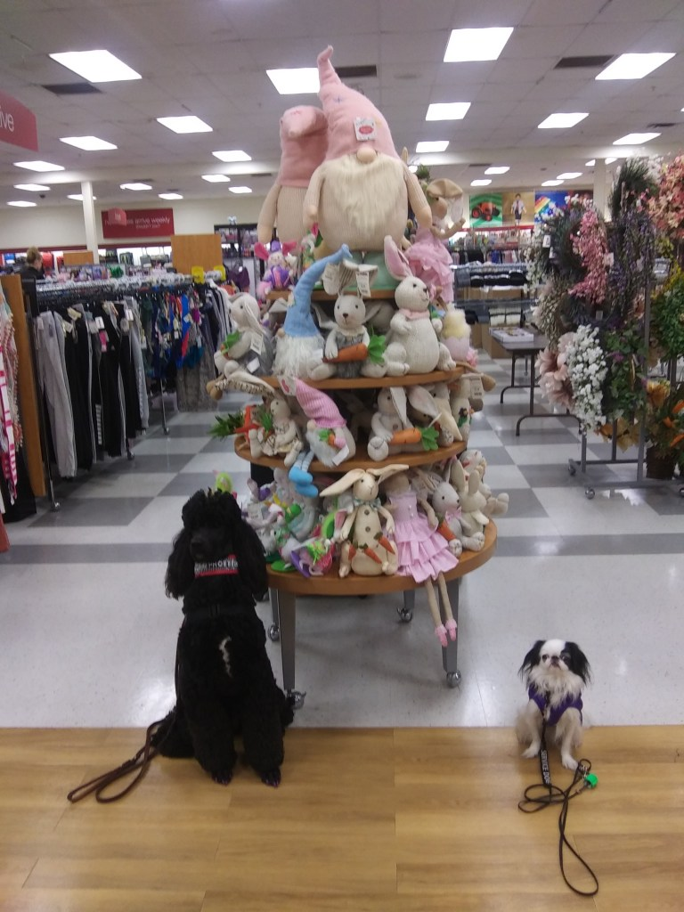Phoebe and Hestia pose in front of the Easter toy display.