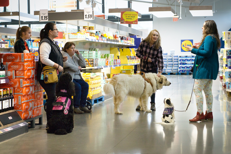 Everyone stands around in a back aisle of Lidl. Veronica is explaining something as all the humans and Hestia watch her.