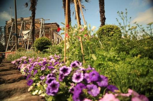 C1 Garden, Christchurch (Photo Credit: Fisheye Films)