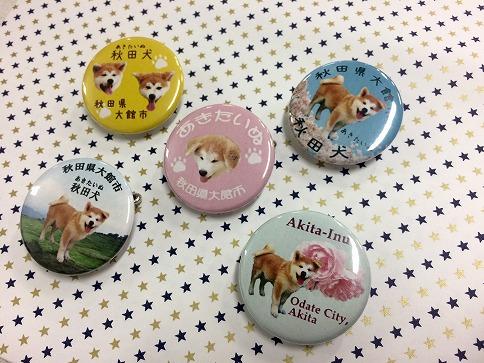 新商品★秋田犬缶バッジ