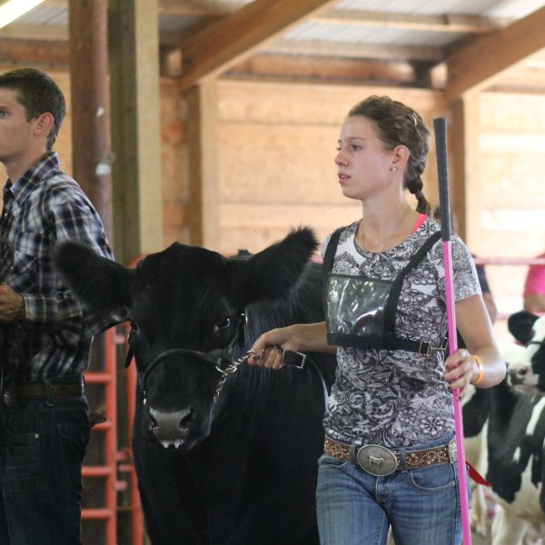 Dodge County Dairy Youth Recognition Auction