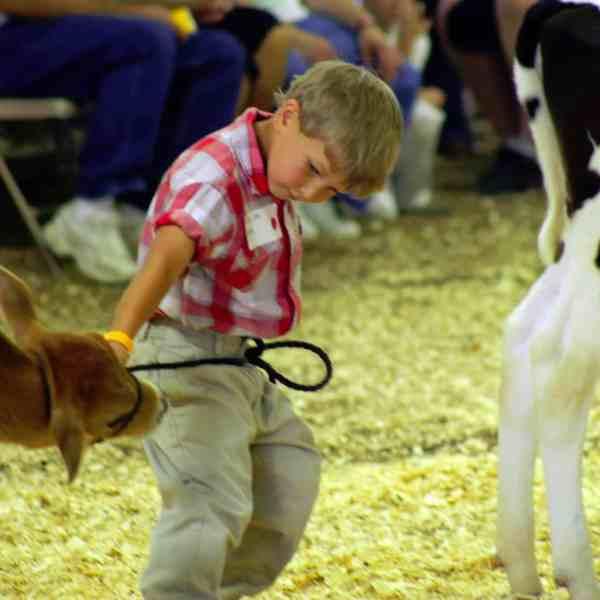 TV Commercial Sneak Peak – Dodge County Fair, Beaver Dam, WI