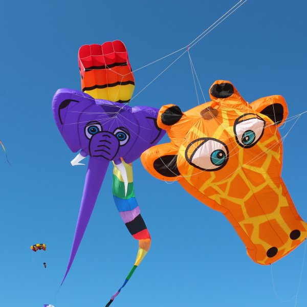 Kite Flyers coming to Fairgrounds this weekend
