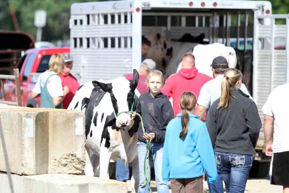 Animal Science Junior Fair