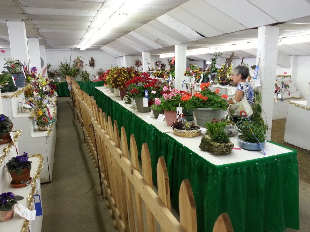 Open Class Flowers and Vegetable Exhibits under the Grandstand