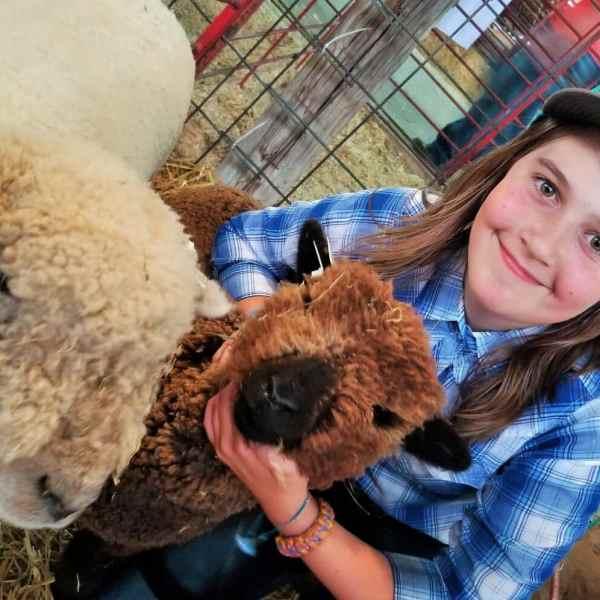 Ganske exhibits unique Babydoll sheep breed; Voigt is BAAAAAck, again, with sheep
