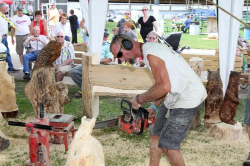 Chainsaw Carving Demonstration Wisconsin