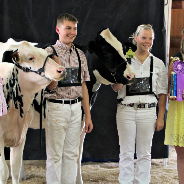 Junior Fair Dairy Showmanship