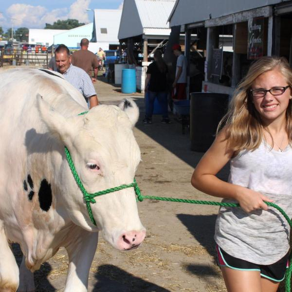 Dairy Youth Recognition Auction