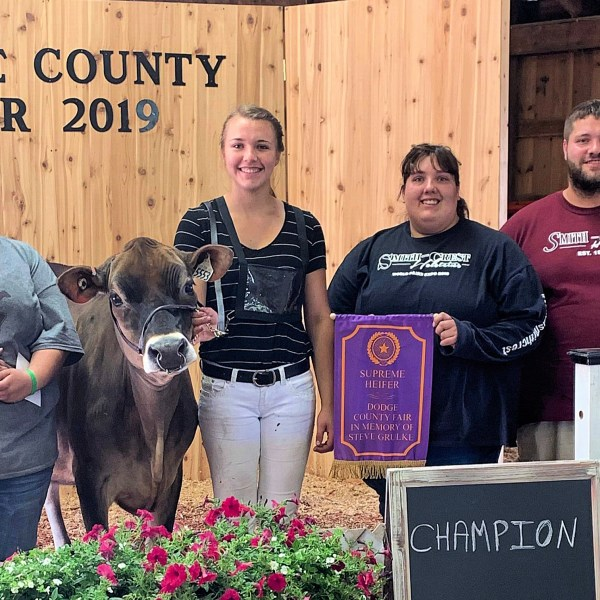 Not all sports involve a ball; Nickels excels at showing dairy cattle