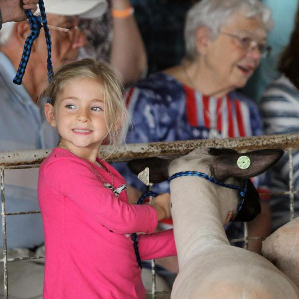 Dodge County Fair junior registration available online