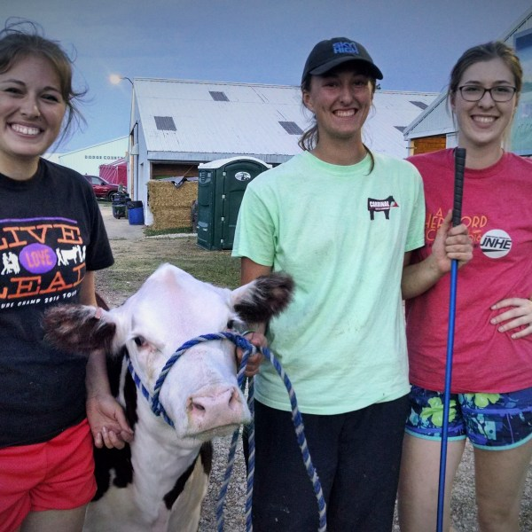 Dairy and livestock fitting competition one of best in the state