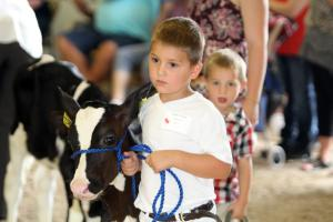 Wisconsin Tourism Little Britches Showmanship