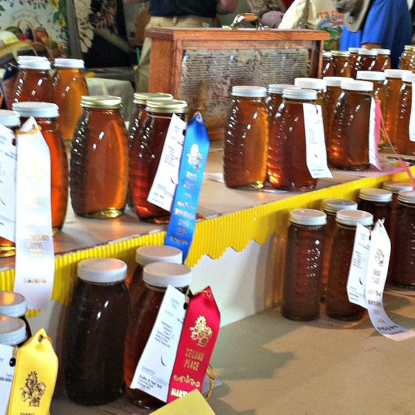 2019 Open Class Honey Judging Results