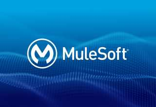 Reasons to Get Mulesoft Professional Services