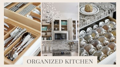 Stuff You Definitly Need In Organized Kitchen