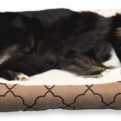 Dog-Bed-3