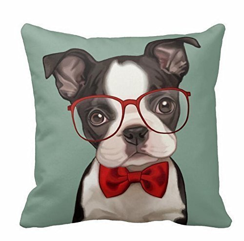 Top 3 Health Concerns For Your Boston Terrier