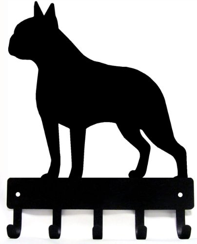 Boston Terrier Video: Boston Terrier Puppy first bath