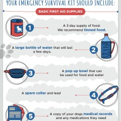 Pet-Survival-Kit