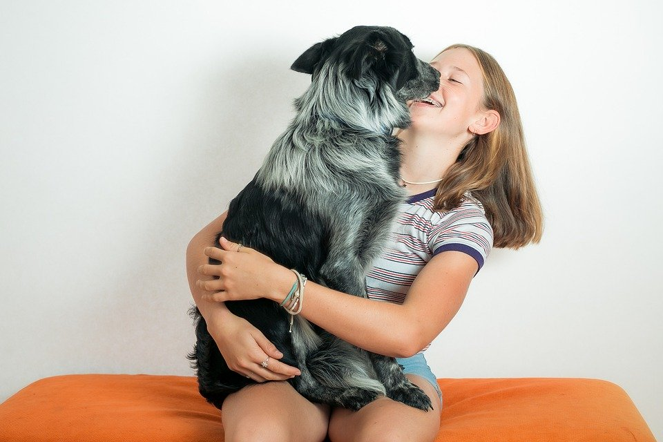 3 Reasons We Love Dogs But Might Not Admit To