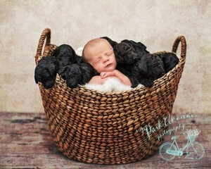 Woman And Her Dog Gave Birth On The Same Day