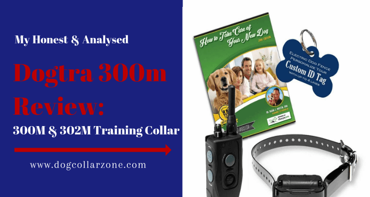 Dogtra 300m Review: 300M 302M Training Collar Review