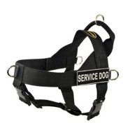 DT Universal Non Pull Dog Harness (Best Rated No Pull Dog Harness)