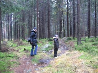 Det regnade, men vi hade det bra i skogen.