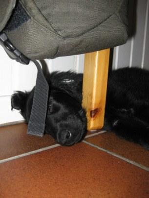 Ada sov en liten stund.