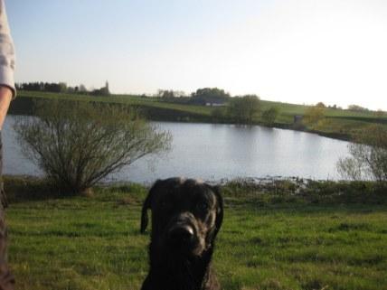 Höj kameran lite. Så man ser den stora sjön som jag sam i!