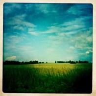 Skåne är rätt vackert.