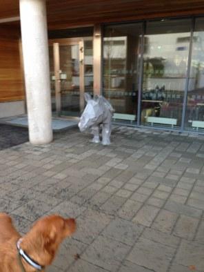 ...och en noshörning!
