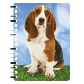 030717118175 3D Notebook Basset Hound