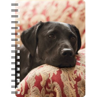 030717123193 3D Notebook Labrador Black 4