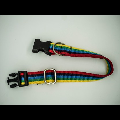 Rainbow Webbing Collar