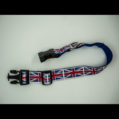 Union Jacks on Royal Blue Collar