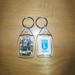 Guide Dog Oakley Keyrings