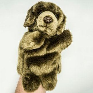 Labrador Chocolate Glove Puppet