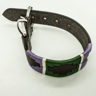 Lilac and Green Polo S Leather Collar